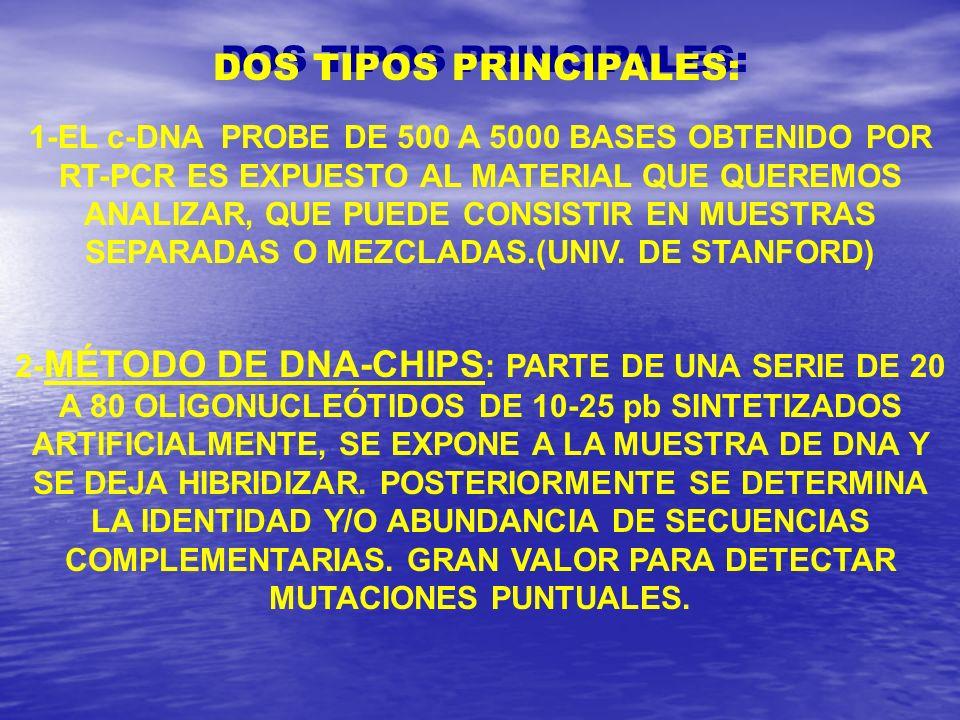 DOS TIPOS PRINCIPALES: