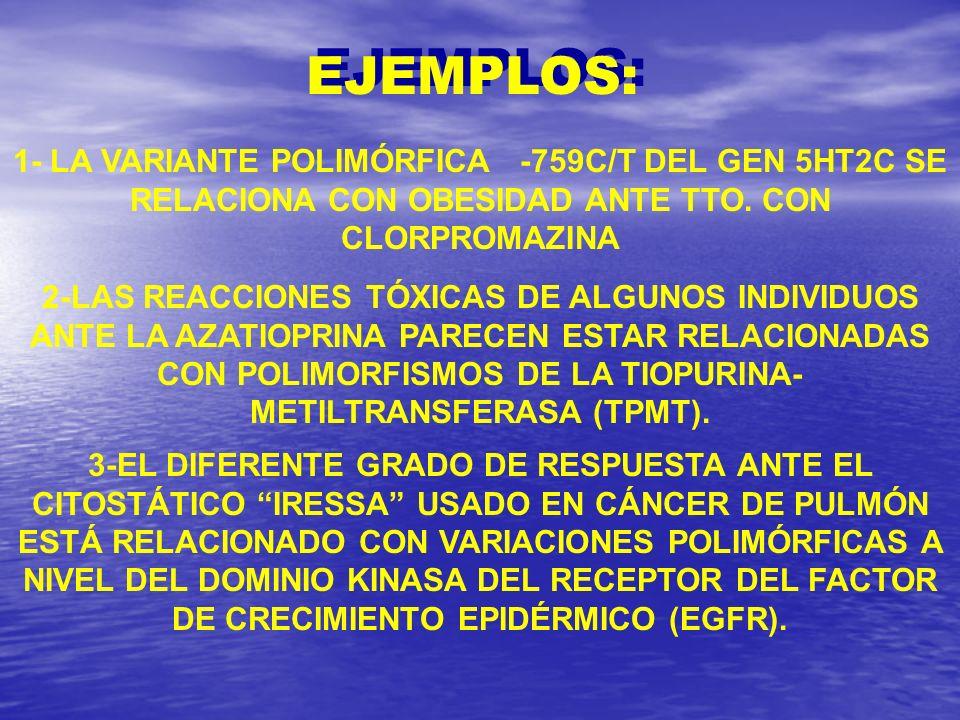 EJEMPLOS: 1- LA VARIANTE POLIMÓRFICA -759C/T DEL GEN 5HT2C SE RELACIONA CON OBESIDAD ANTE TTO. CON CLORPROMAZINA.