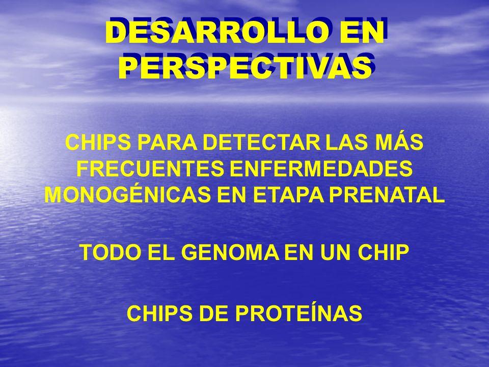 DESARROLLO EN PERSPECTIVAS TODO EL GENOMA EN UN CHIP
