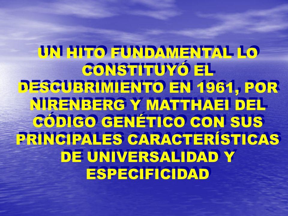 UN HITO FUNDAMENTAL LO CONSTITUYÓ EL DESCUBRIMIENTO EN 1961, POR NIRENBERG Y MATTHAEI DEL CÓDIGO GENÉTICO CON SUS PRINCIPALES CARACTERÍSTICAS DE UNIVERSALIDAD Y ESPECIFICIDAD