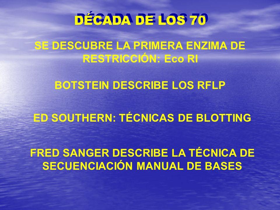 DÉCADA DE LOS 70 SE DESCUBRE LA PRIMERA ENZIMA DE RESTRICCIÓN: Eco RI