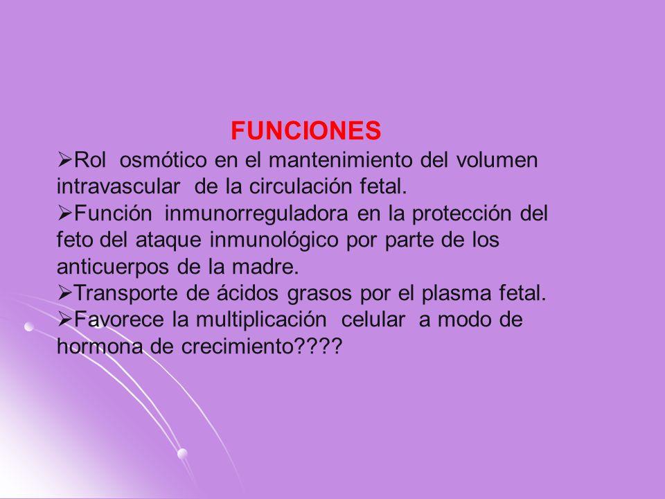 FUNCIONES Rol osmótico en el mantenimiento del volumen intravascular de la circulación fetal.