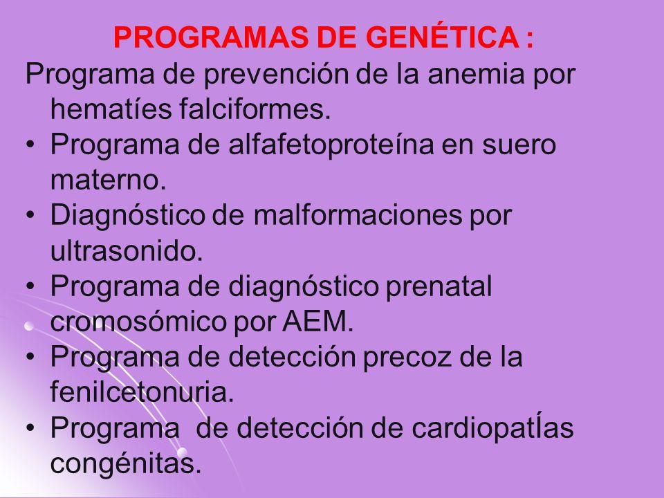 PROGRAMAS DE GENÉTICA :
