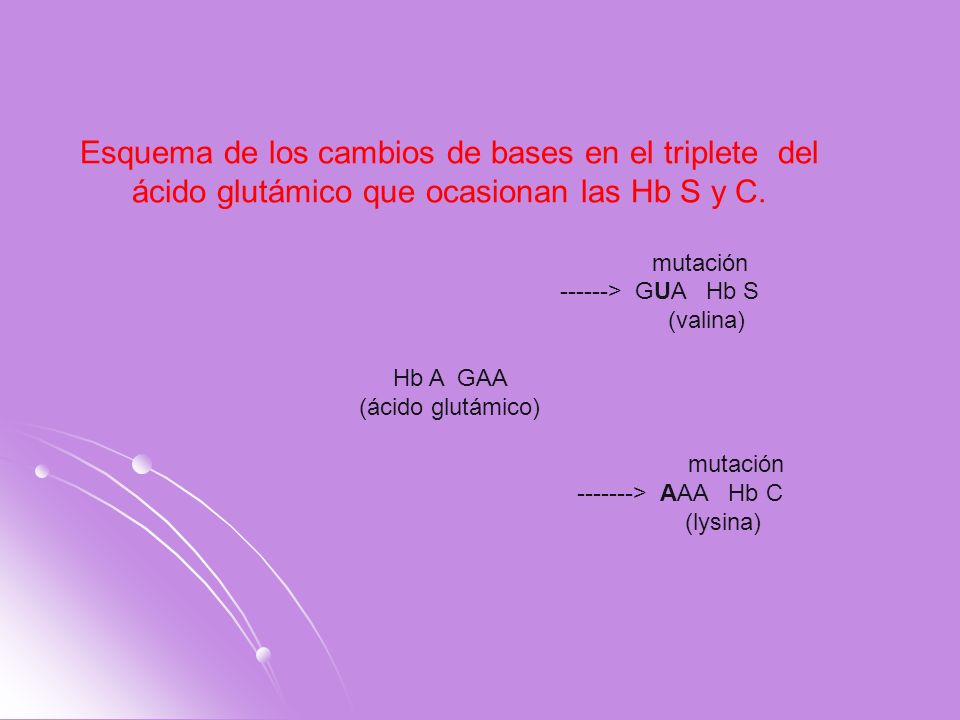 Esquema de los cambios de bases en el triplete del ácido glutámico que ocasionan las Hb S y C.