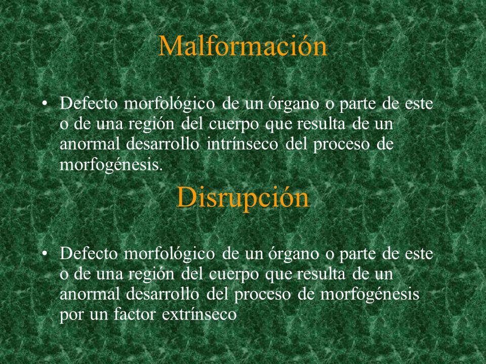 Malformación Disrupción