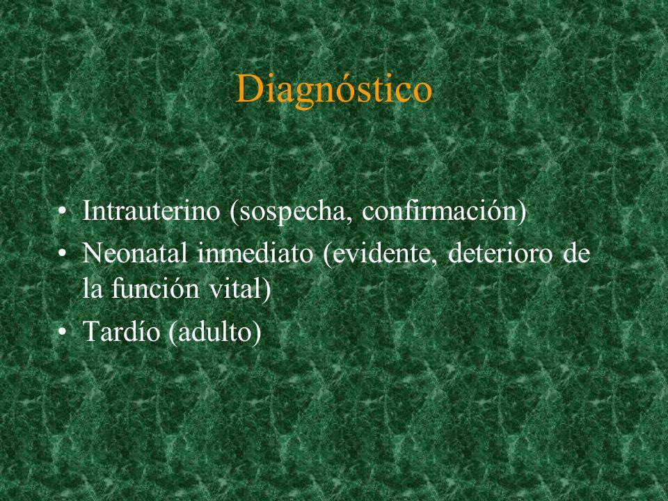 Diagnóstico Intrauterino (sospecha, confirmación)