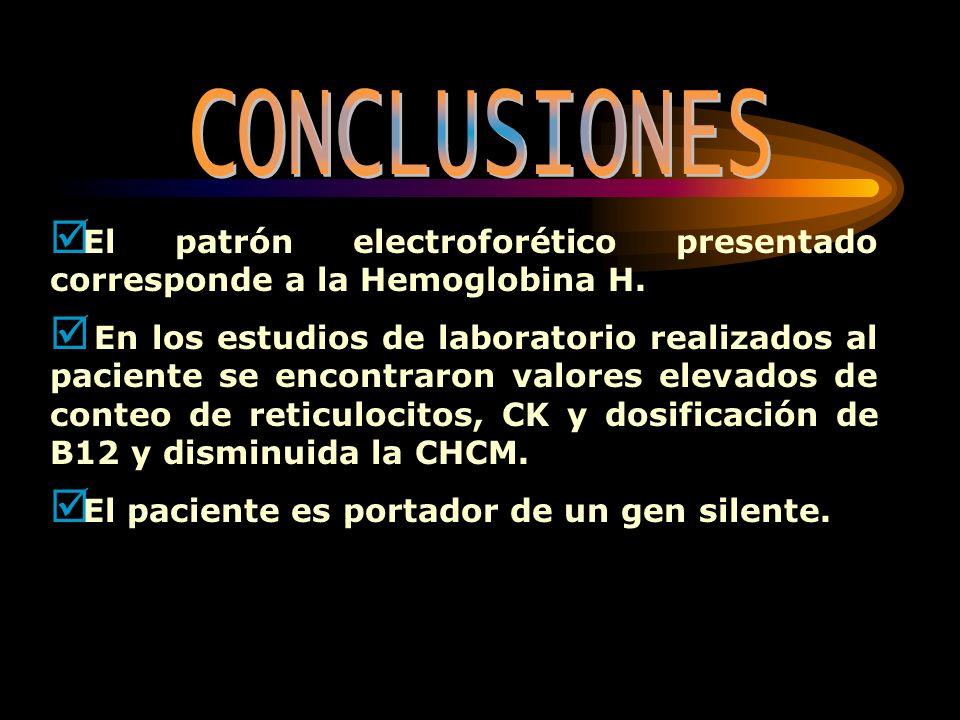 CONCLUSIONES El patrón electroforético presentado corresponde a la Hemoglobina H.