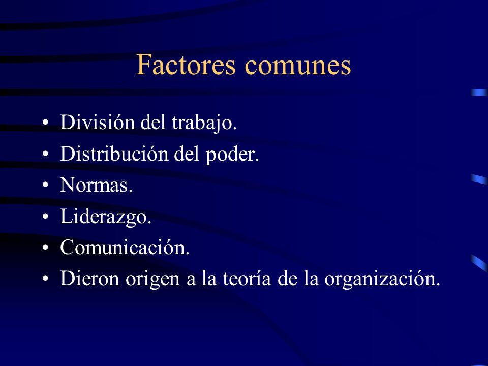 Factores comunes División del trabajo. Distribución del poder. Normas.