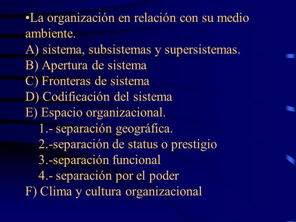 La organización en relación con su medio ambiente