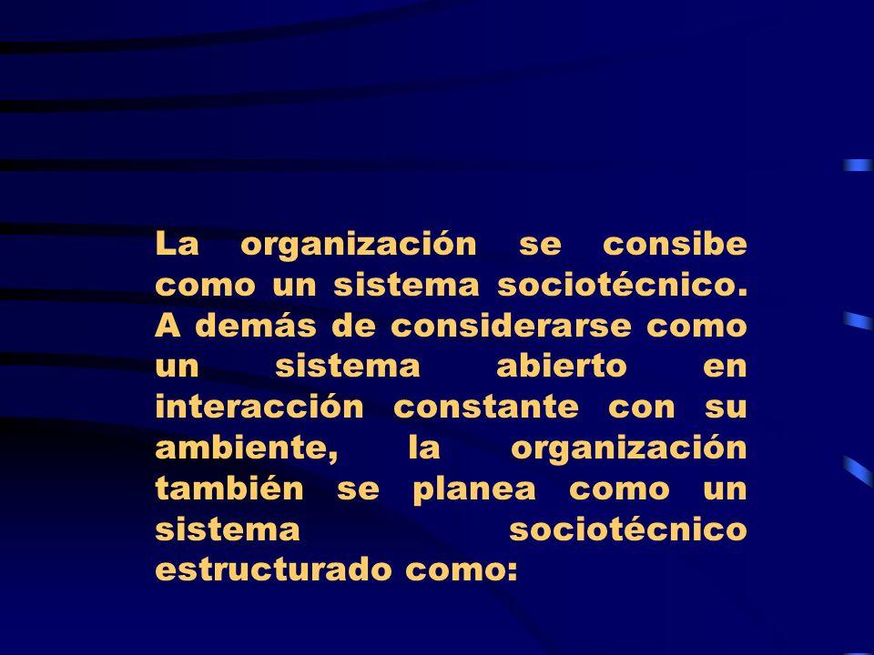 La organización se consibe como un sistema sociotécnico