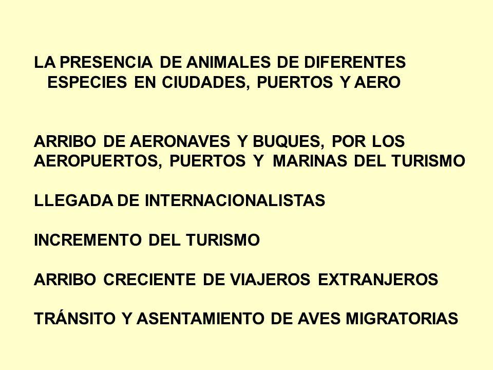 LA PRESENCIA DE ANIMALES DE DIFERENTES