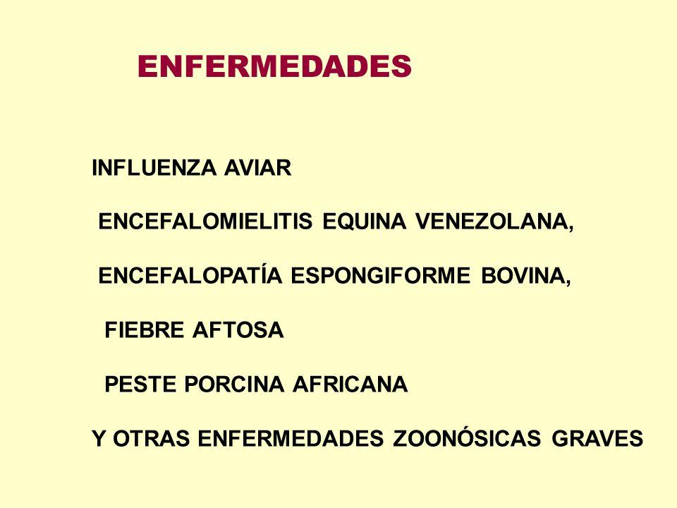 ENFERMEDADES INFLUENZA AVIAR ENCEFALOMIELITIS EQUINA VENEZOLANA,