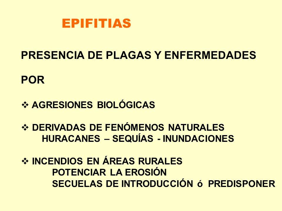 EPIFITIAS PRESENCIA DE PLAGAS Y ENFERMEDADES POR AGRESIONES BIOLÓGICAS