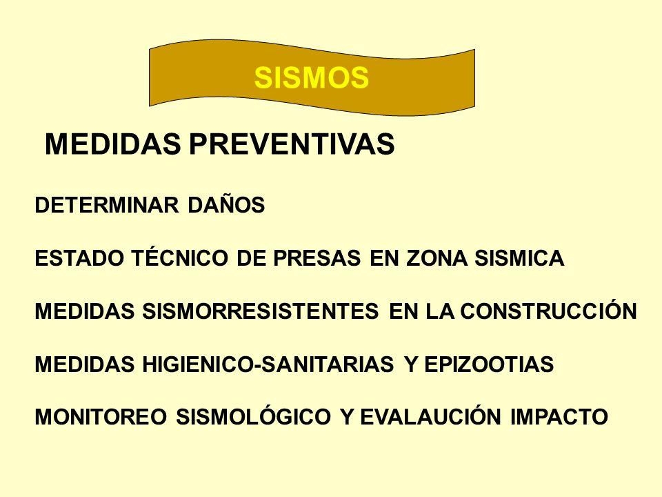 SISMOS MEDIDAS PREVENTIVAS DETERMINAR DAÑOS