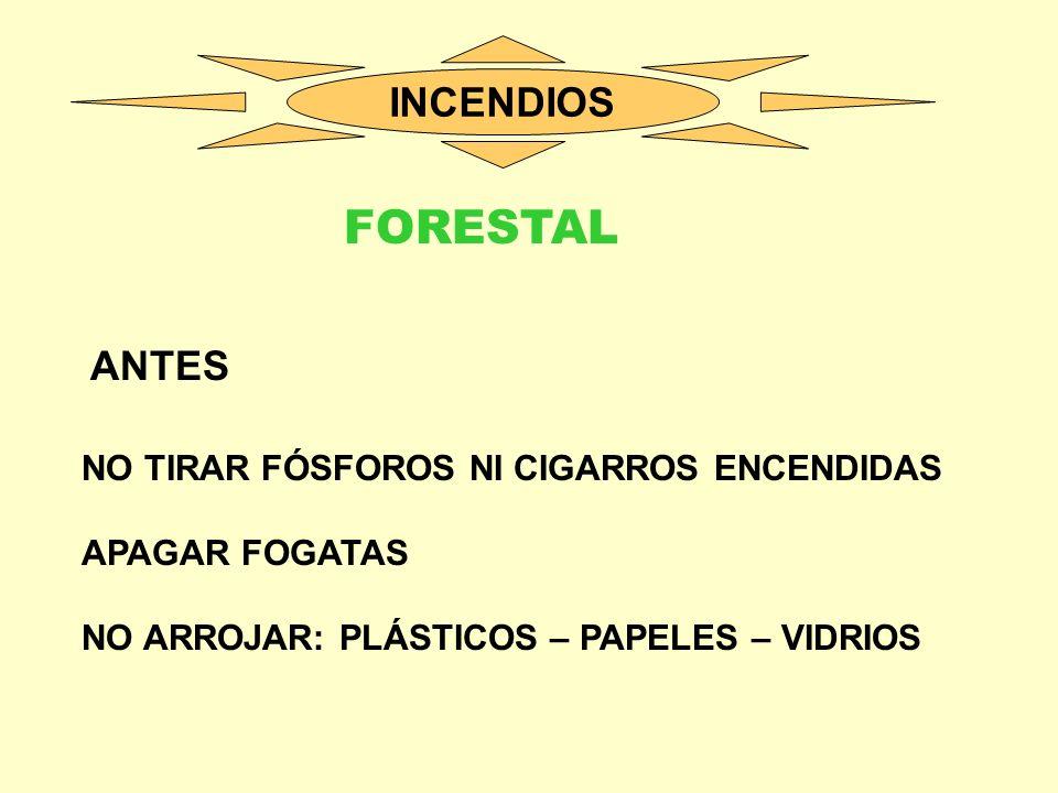 FORESTAL INCENDIOS ANTES NO TIRAR FÓSFOROS NI CIGARROS ENCENDIDAS
