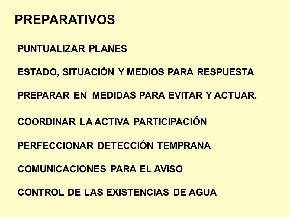 PREPARATIVOS PUNTUALIZAR PLANES