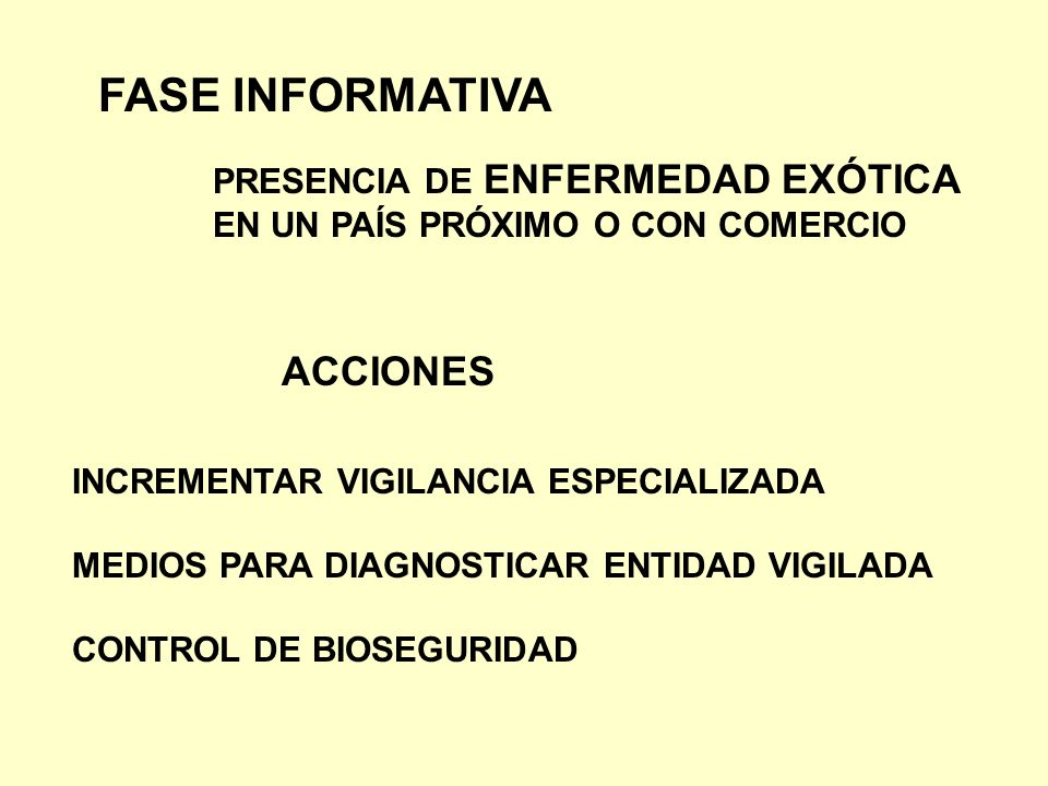 FASE INFORMATIVA ACCIONES PRESENCIA DE ENFERMEDAD EXÓTICA