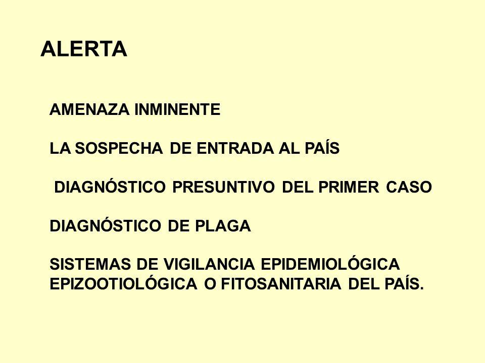 ALERTA AMENAZA INMINENTE LA SOSPECHA DE ENTRADA AL PAÍS