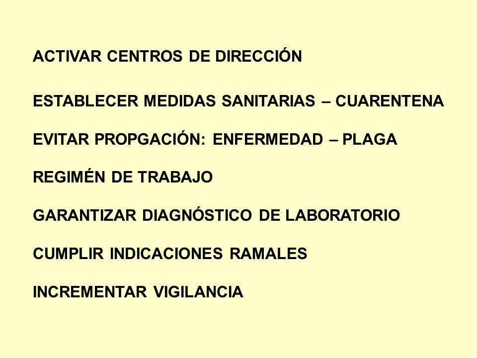ACTIVAR CENTROS DE DIRECCIÓN