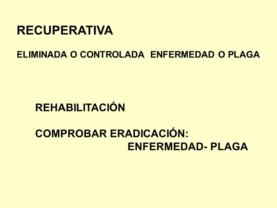 RECUPERATIVA REHABILITACIÓN COMPROBAR ERADICACIÓN: ENFERMEDAD- PLAGA