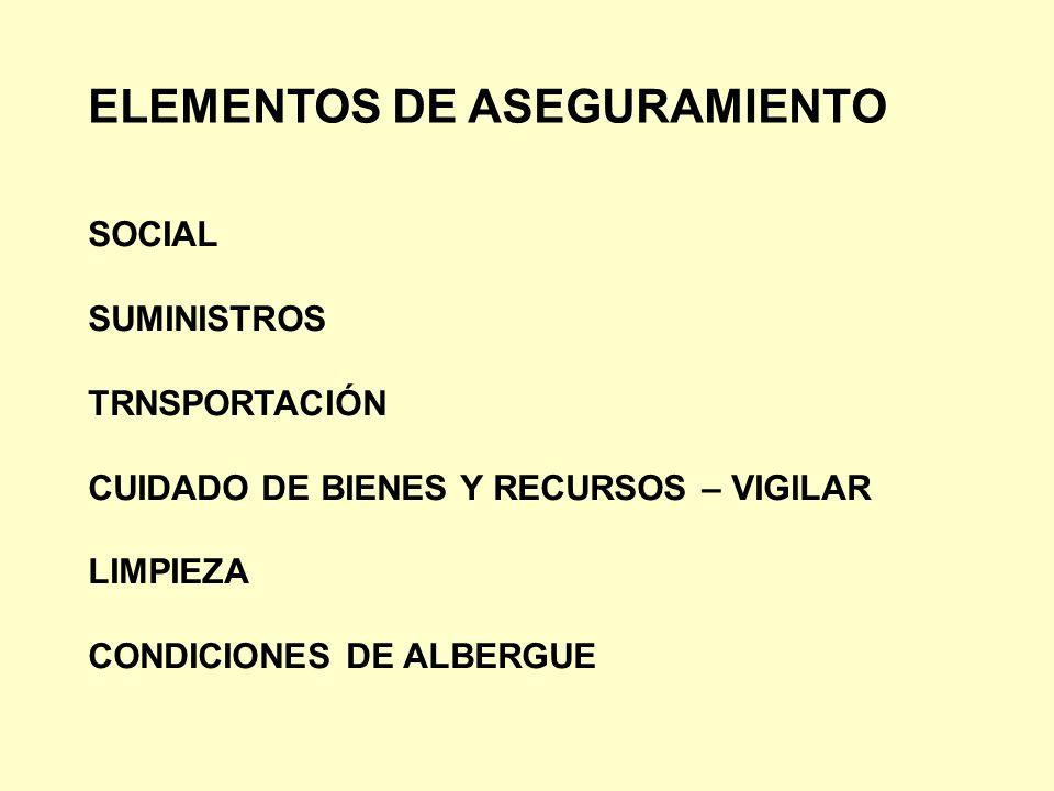 ELEMENTOS DE ASEGURAMIENTO