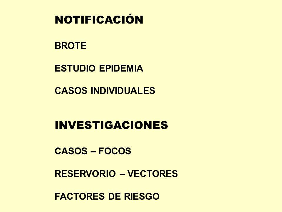 NOTIFICACIÓN INVESTIGACIONES BROTE ESTUDIO EPIDEMIA CASOS INDIVIDUALES