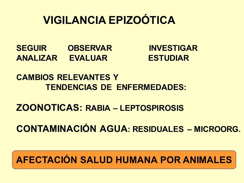 AFECTACIÓN SALUD HUMANA POR ANIMALES