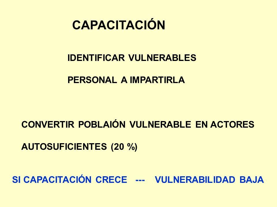 CAPACITACIÓN IDENTIFICAR VULNERABLES PERSONAL A IMPARTIRLA