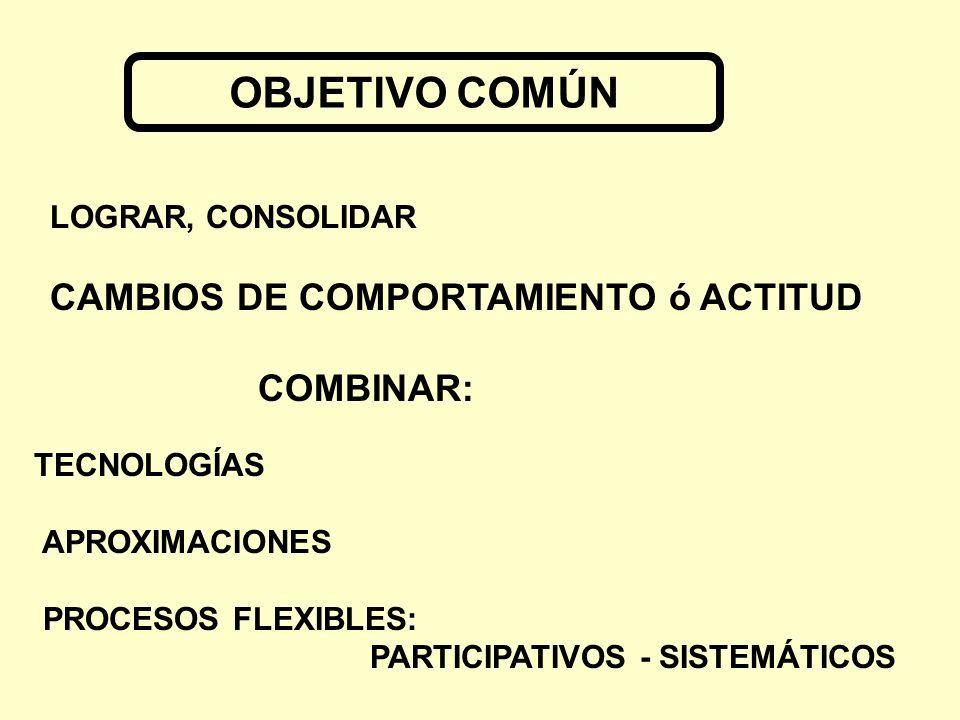 OBJETIVO COMÚN CAMBIOS DE COMPORTAMIENTO ó ACTITUD COMBINAR: