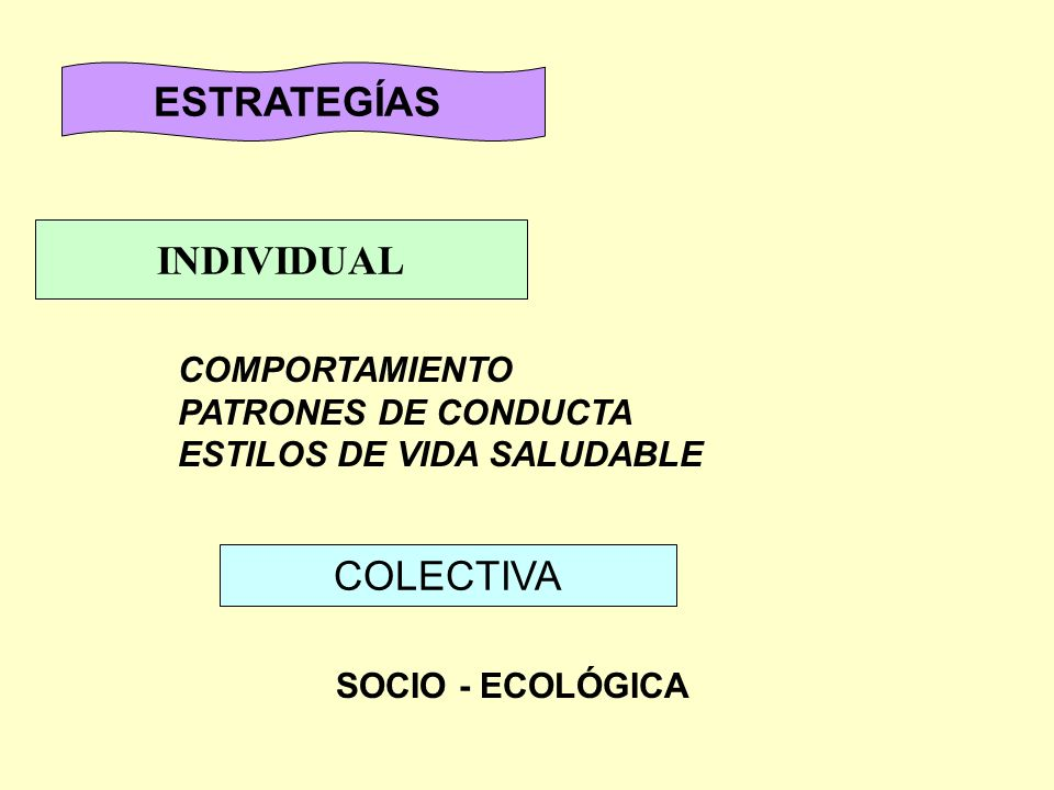 ESTRATEGÍAS INDIVIDUAL COLECTIVA COMPORTAMIENTO PATRONES DE CONDUCTA