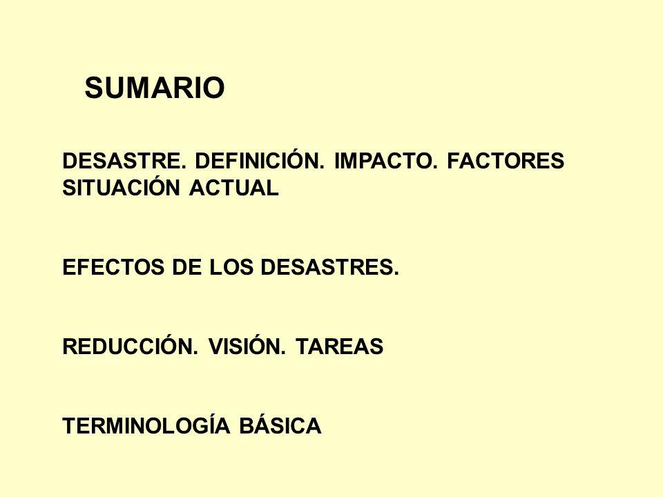 SUMARIO DESASTRE. DEFINICIÓN. IMPACTO. FACTORES SITUACIÓN ACTUAL