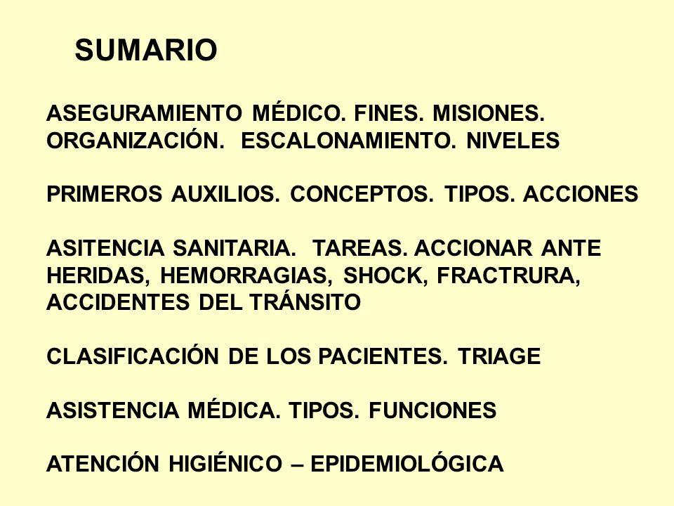 SUMARIO ASEGURAMIENTO MÉDICO. FINES. MISIONES.