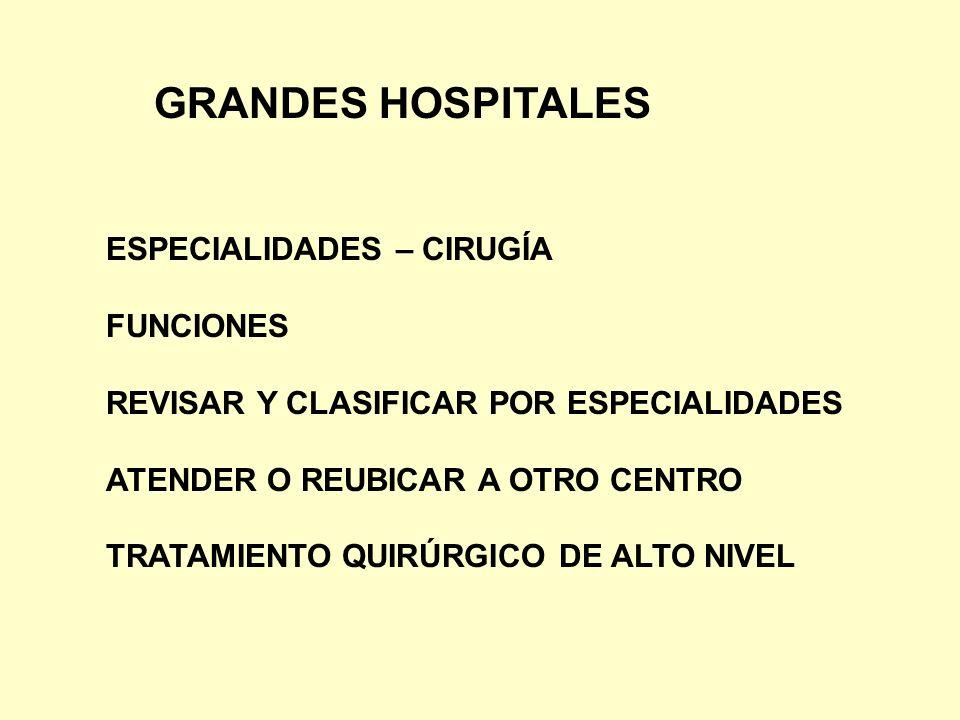 GRANDES HOSPITALES ESPECIALIDADES – CIRUGÍA FUNCIONES