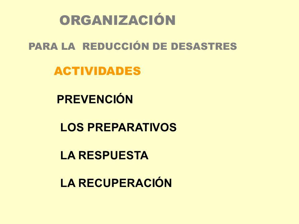 ORGANIZACIÓN ACTIVIDADES PREVENCIÓN LOS PREPARATIVOS LA RESPUESTA