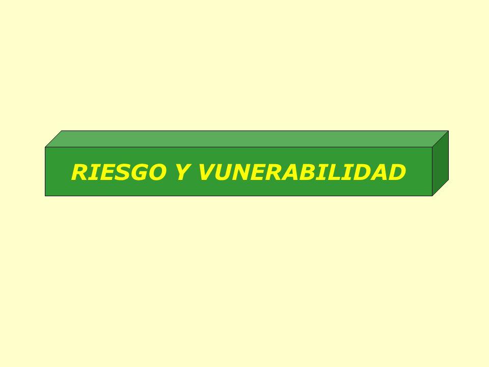 RIESGO Y VUNERABILIDAD