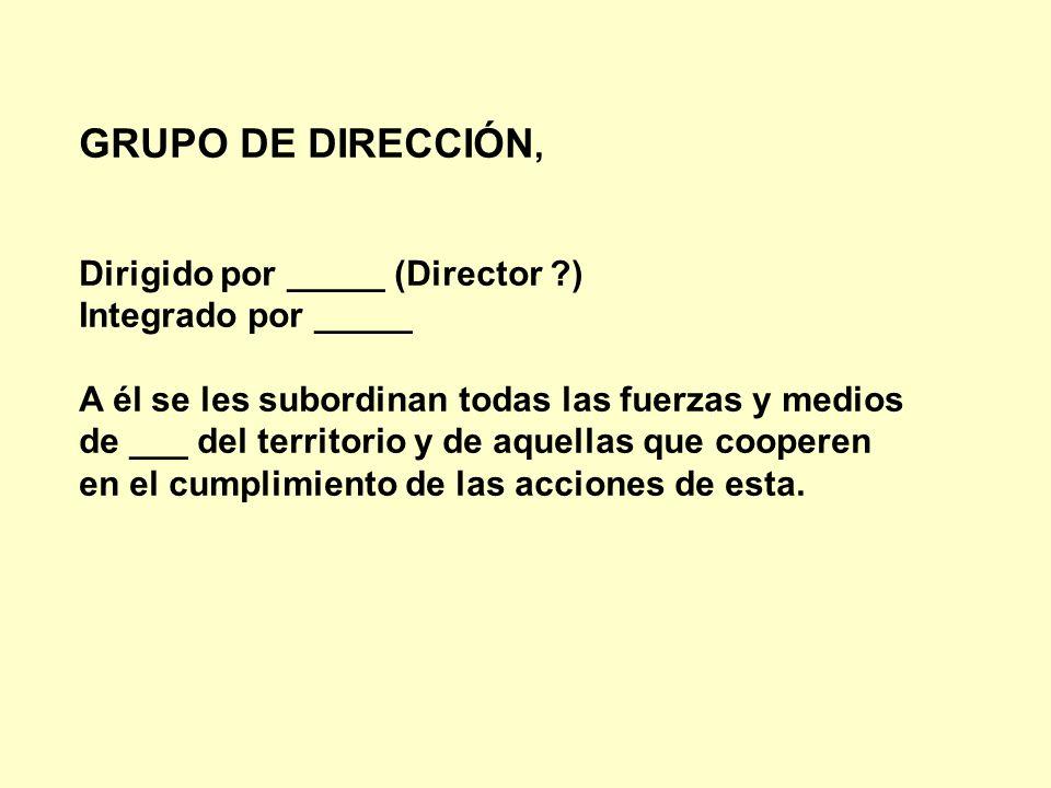GRUPO DE DIRECCIÓN, Dirigido por _____ (Director )
