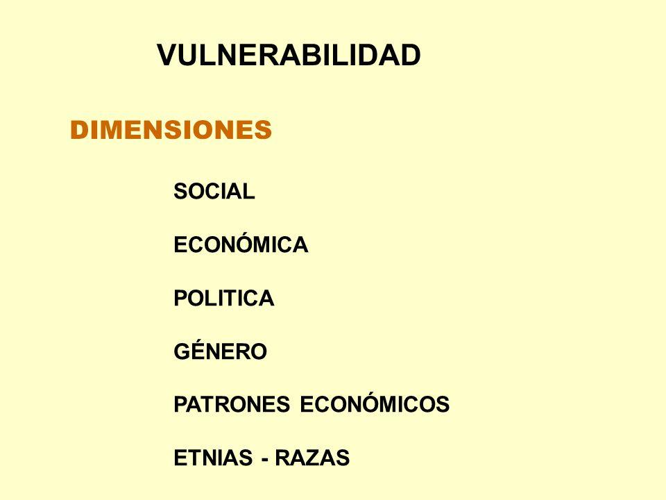 VULNERABILIDAD DIMENSIONES SOCIAL ECONÓMICA POLITICA GÉNERO