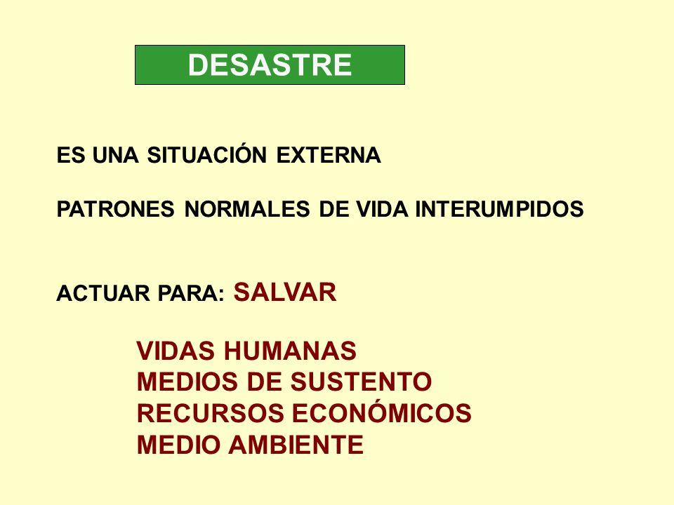 DESASTRE VIDAS HUMANAS MEDIOS DE SUSTENTO RECURSOS ECONÓMICOS