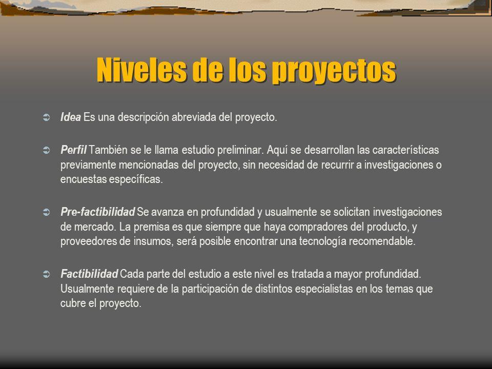 Niveles de los proyectos