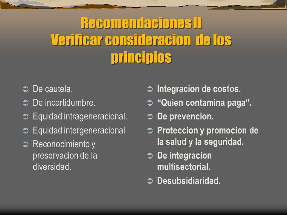 Recomendaciones II Verificar consideracion de los principios