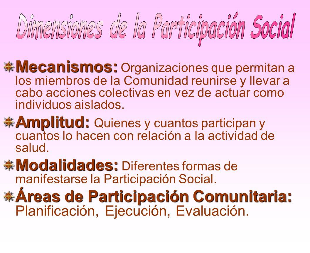 Dimensiones de la Participación Social