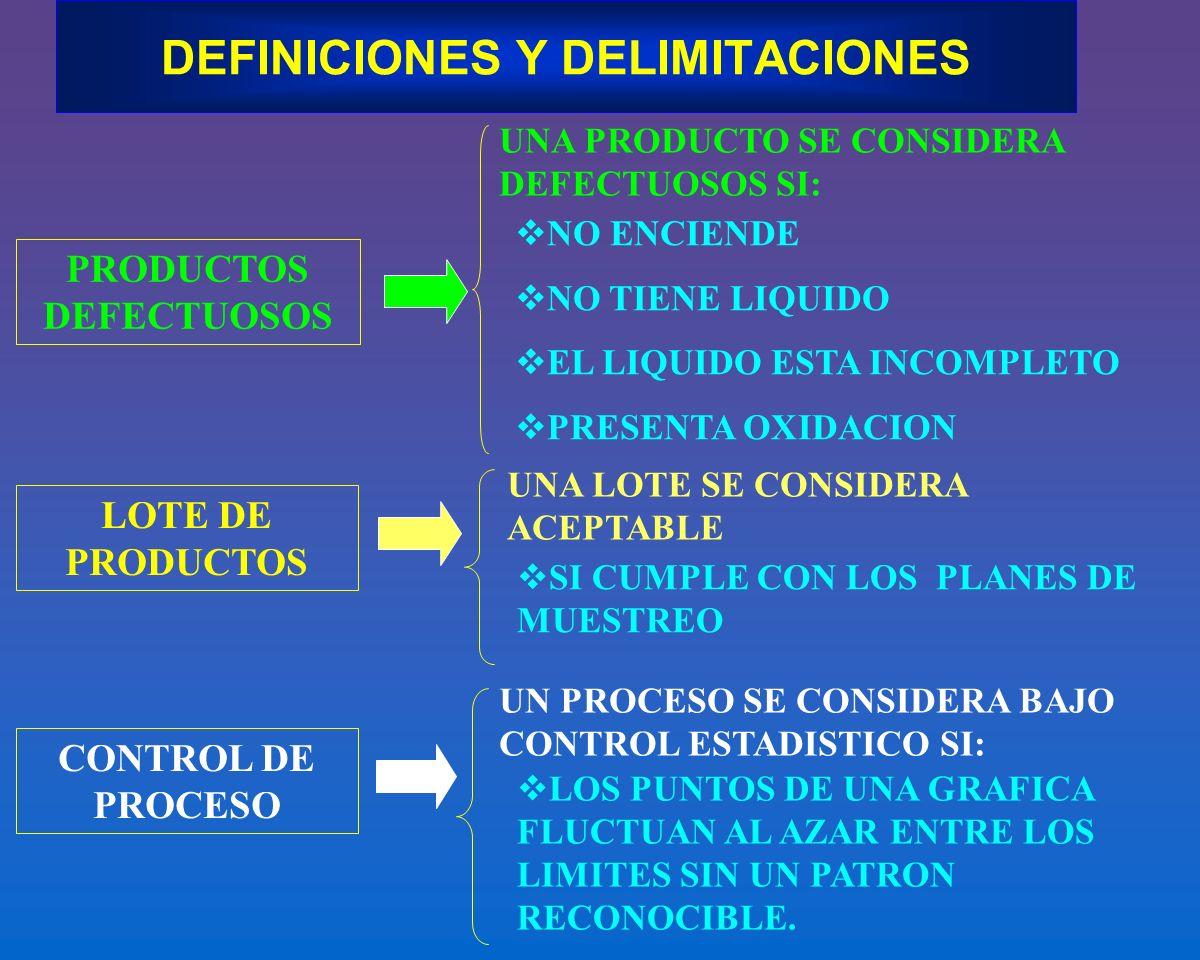 DEFINICIONES Y DELIMITACIONES
