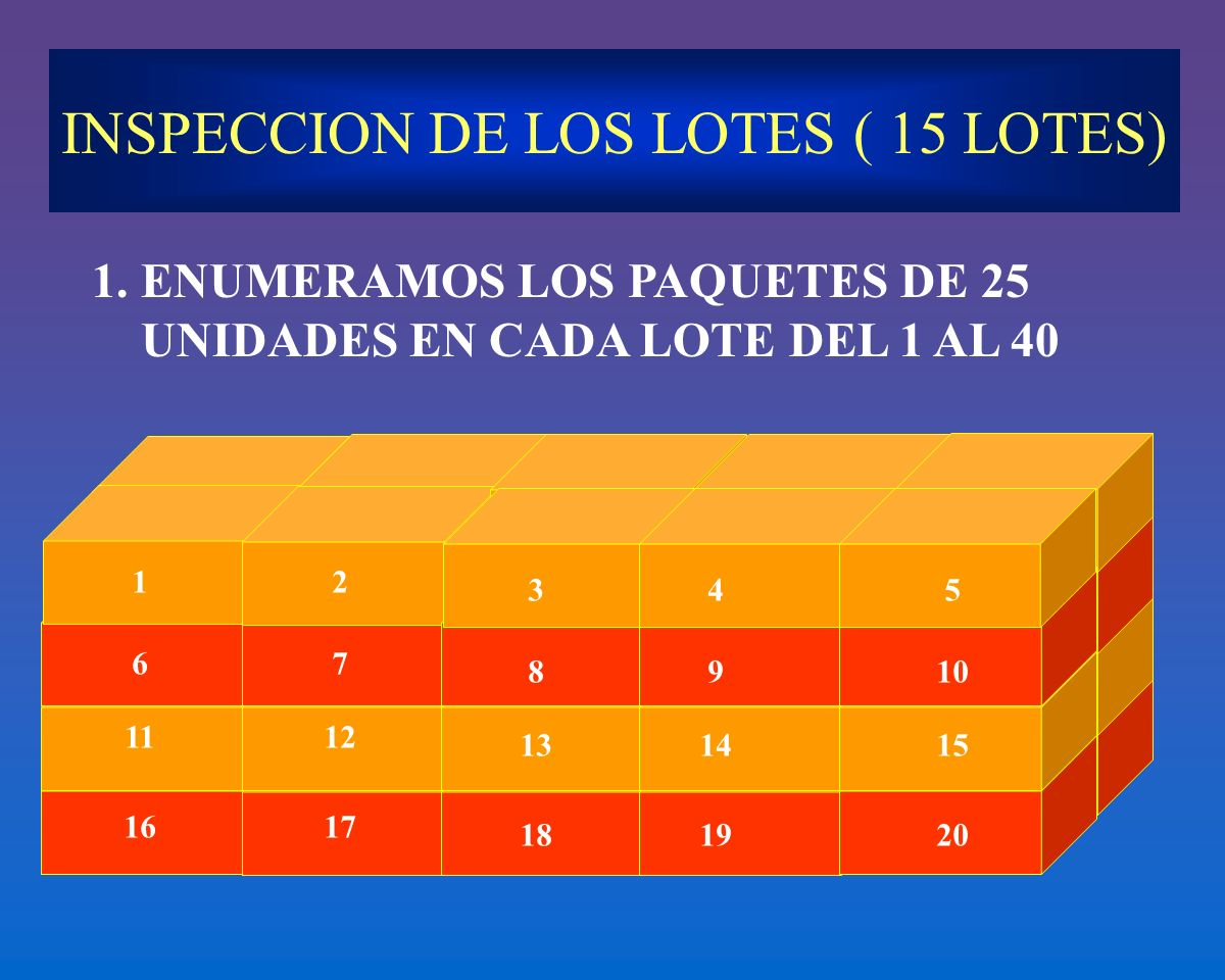 INSPECCION DE LOS LOTES ( 15 LOTES)
