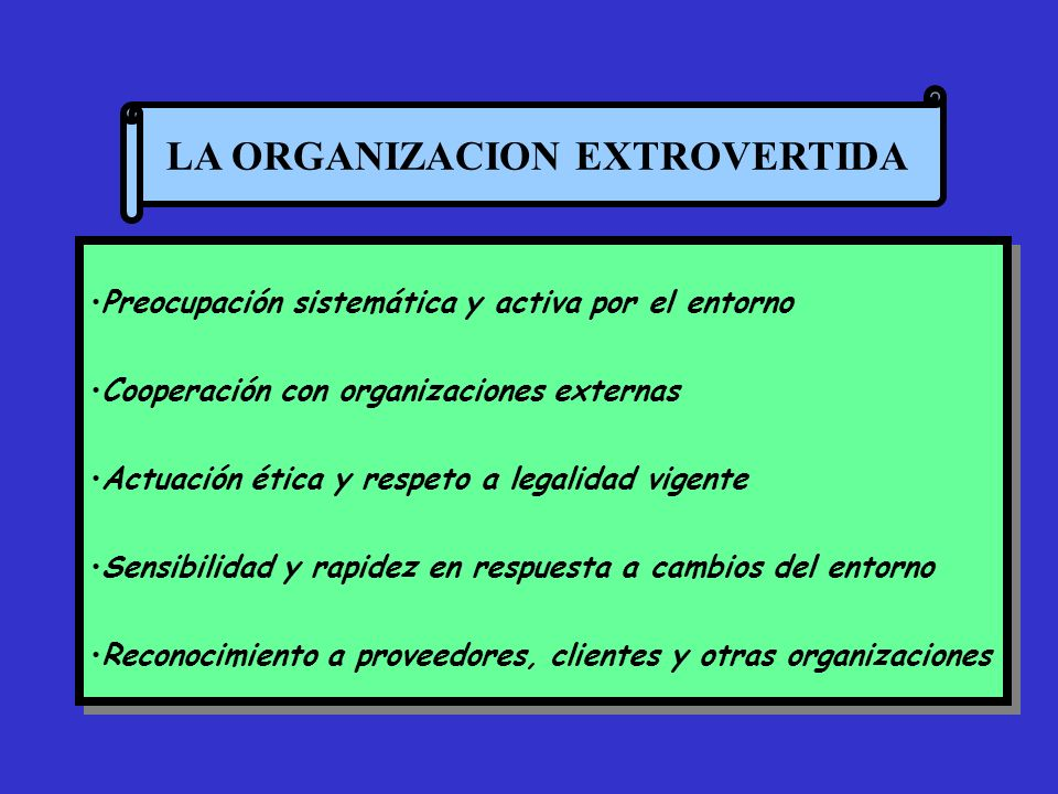 LA ORGANIZACION EXTROVERTIDA