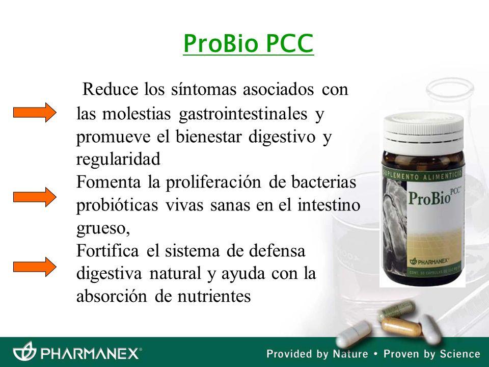 ProBio PCCReduce los síntomas asociados con las molestias gastrointestinales y promueve el bienestar digestivo y regularidad.