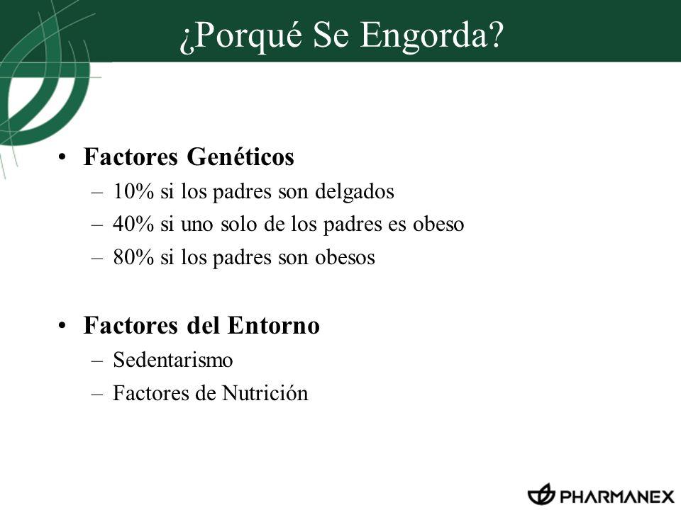 ¿Porqué Se Engorda Factores Genéticos Factores del Entorno