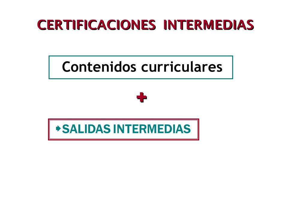 CERTIFICACIONES INTERMEDIAS Contenidos curriculares