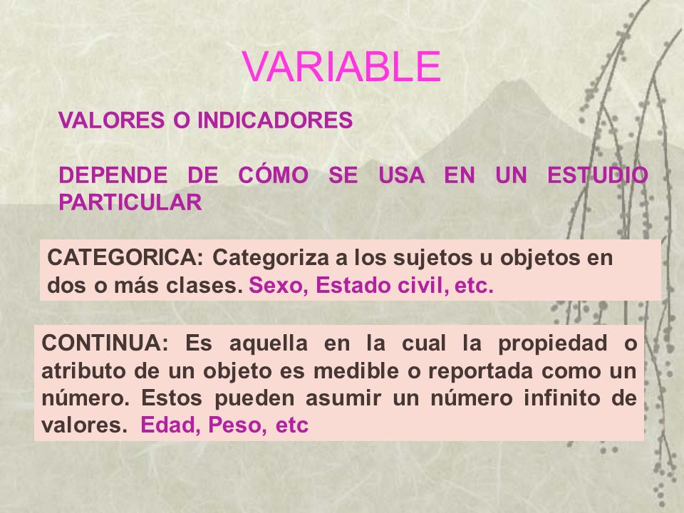 VARIABLE VALORES O INDICADORES