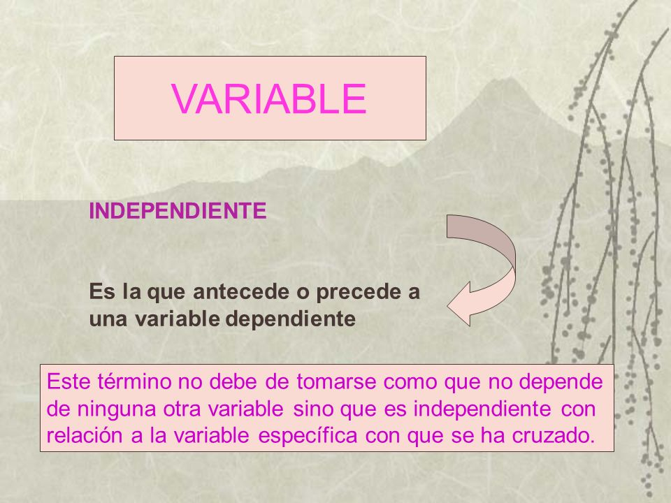 VARIABLE INDEPENDIENTE Es la que antecede o precede a