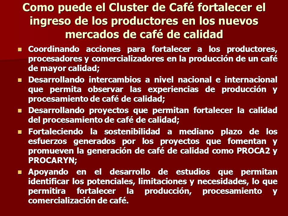 Como puede el Cluster de Café fortalecer el ingreso de los productores en los nuevos mercados de café de calidad